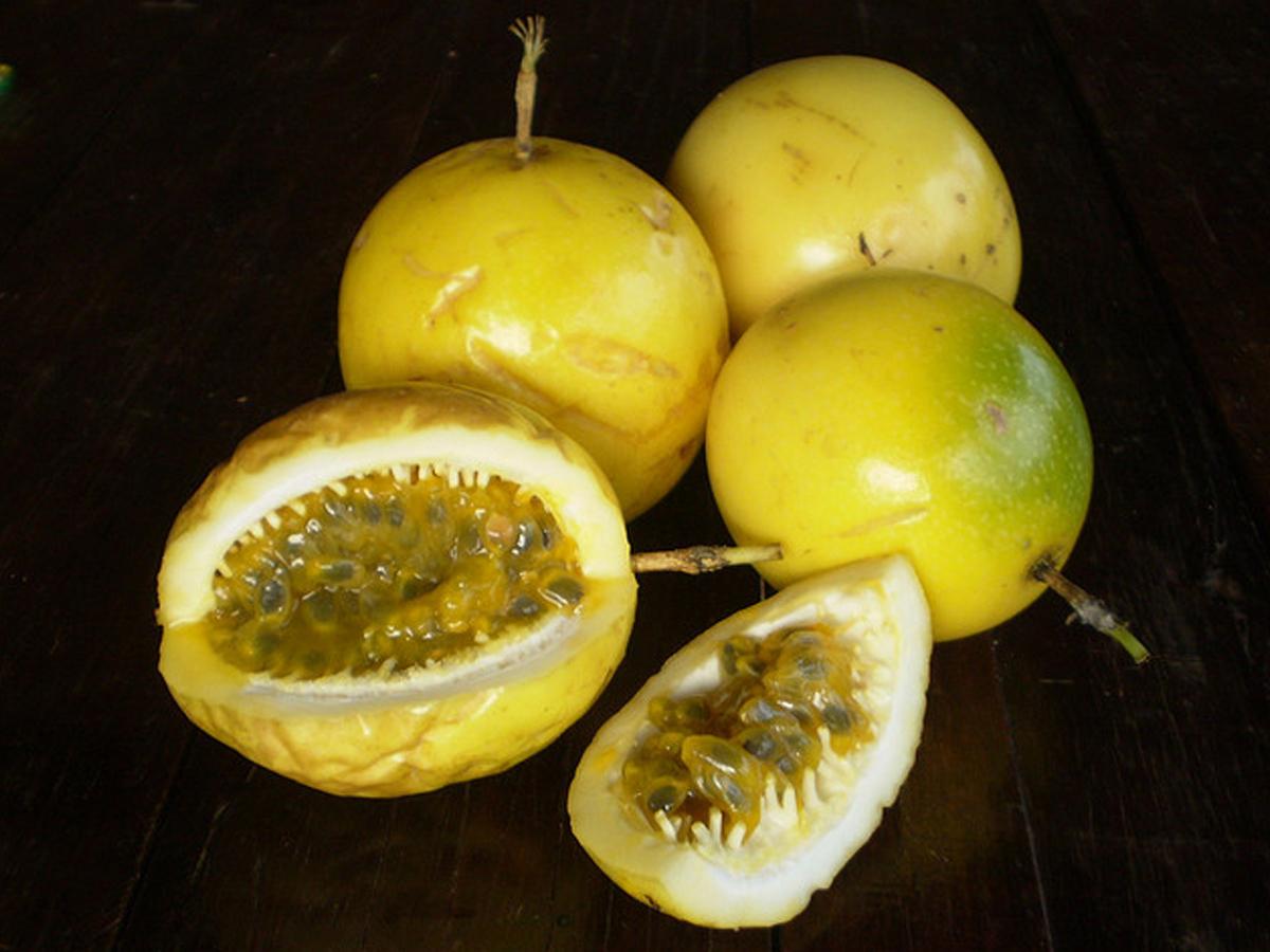 Maracujá(Frutto della passione)